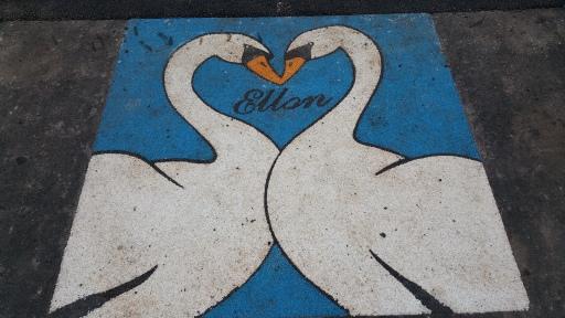 Ellon@Heart Swans